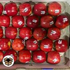 Picture of APPLE PINK LADY PREMIUM TRAY 30+ PIECES