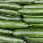 Picture of CUCUMBER LEBANESE 1KG