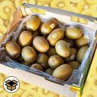 Picture of KIWI FRUIT GOLD ZESPRI 6KG BOX