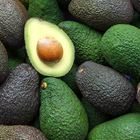 Picture of AVOCADO HASS XXL