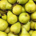 Picture of PEAR PACKHAM 1KG