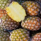 Picture of PINEAPPLE TOPLESS XXL