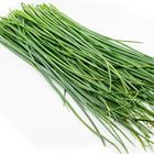 Picture of HERB CHIVES ONION BUNCH