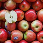 Picture of APPLE JAZZ 2KG P/PACK