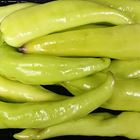 Picture of CHILLI YELLOW SWEET 1KG