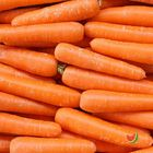 Picture of CARROT JACK RABBITS 1KG