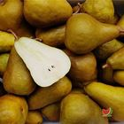 Picture of PEAR BEURRE BOSC 1KG