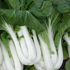 Picture of PAK CHOY JAPANESE BUNCH