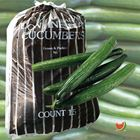 Picture of CUCUMBER CONTINENTAL BAG 15 PIECES