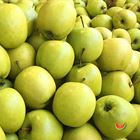 Picture of APPLE GOLDEN DELICIOUS SMALL 1KG