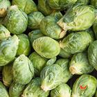 Picture of BRUSSEL SPROUTS 1KG