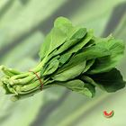 Picture of CHOY SUM 3 FOR $4.40