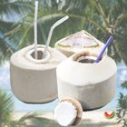 Picture of DRINKING COCONUT 2 FOR $ 7.70