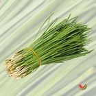 Picture of GARLIC CHIVES 1KG