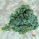 Picture of KALE GREEN 2 FOR $5.50