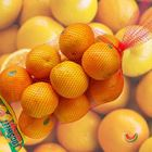 Picture of ORANGE VALENCIA 3KG NET