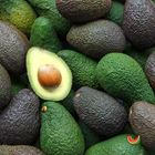 Picture of AVOCADO HASS  LARGE 2 FOR $11