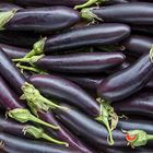 Picture of EGGPLANT LEBANESE 1KG