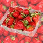 Picture of STRAWBERRY 500G 3 FOR $5.50