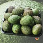Picture of AVOCADO HASS 1KG PRE PACK