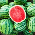 Picture of MINI LEE MELON 2-4KG