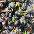 Picture of BLACK CANDY CRUNCH GRAPE