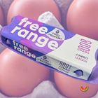 Picture of EGG FREE RANGE 800G