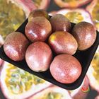 Picture of PANAMA PASSIONFRUIT 8-PACK