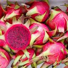 Picture of DRAGON FRUIT PURPLE 1KG