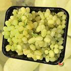 Picture of GRAPE WHITE SEEDLESS 2KG PACK