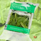 Picture of BABY SPINACH 100G 2 FOR $4.40