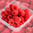 Picture of RASPBERRY 125G