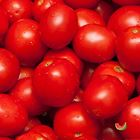 Picture of TOMATO GOURMET 1KG
