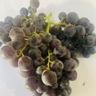 Picture of GRAPE BLACK MUSCATEL 1KG