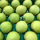 Picture of PEAR NASHI 1KG