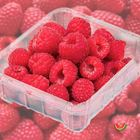 Picture of RASPBERRY 125G 2 FOR $8
