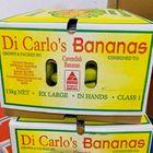 Picture of BANANAS XL PREMIUM 13KG BOX