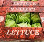 Picture of LETTUCE ICEBERG 12 PIECES BOX