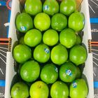 Picture of LIMES 5KG BOX