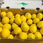 Picture of LEMONS 2ND 15KG BOX