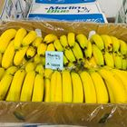 Picture of BANANAS LARGE 13-15KG BOX