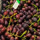 Picture of GRAPE SWEET CELEBRATION 1KG