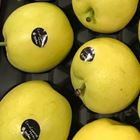 Picture of PEARL NASHI PEAR 1KG