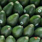 Picture of AVOCADO SHEPPARD 1KG